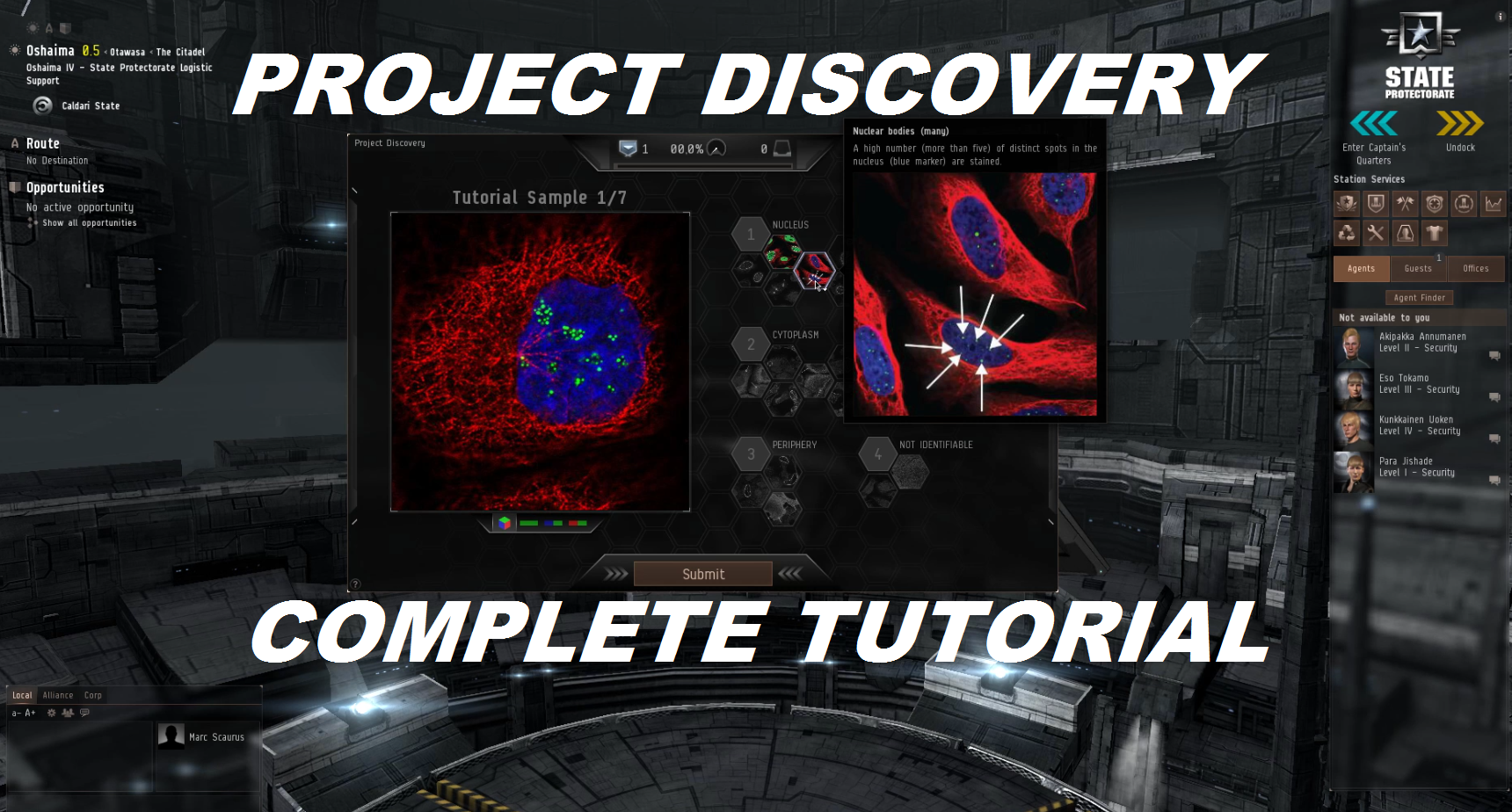 project-discovery-tutorial